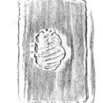 Bellaria-geometrie-mare-02