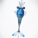 Shrimp or Crayfish (zoea stage)