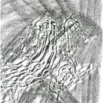 Bellaria-geometrie-mare-20